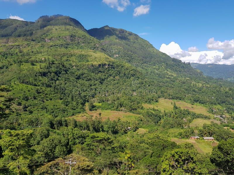 Ландшафт горы в зеленой долине с деревнями в Шри-Ланке стоковые изображения rf
