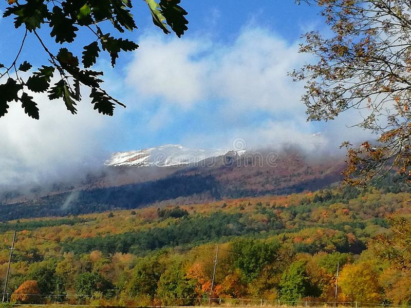 Ландшафт горы в осени стоковое фото