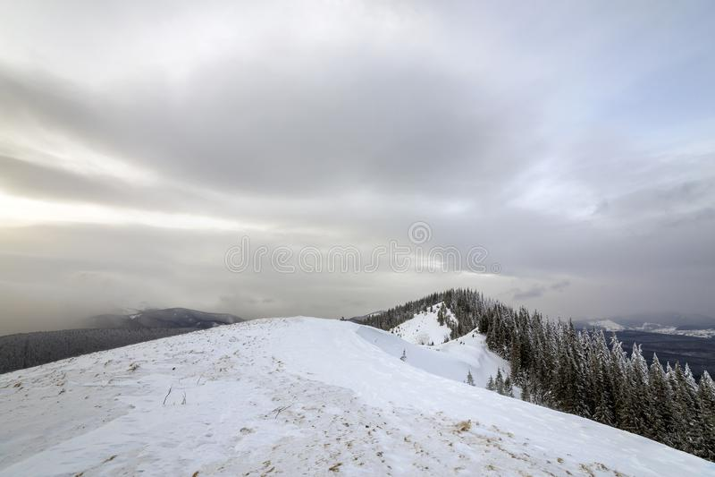 Ландшафт горы зимы, снежные пики и елевые деревья под облачным небом на холодный зимний день стоковая фотография rf