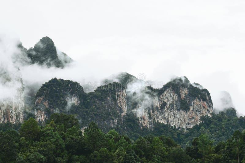 Ландшафт горы на национальном парке Khao Sok стоковое фото rf