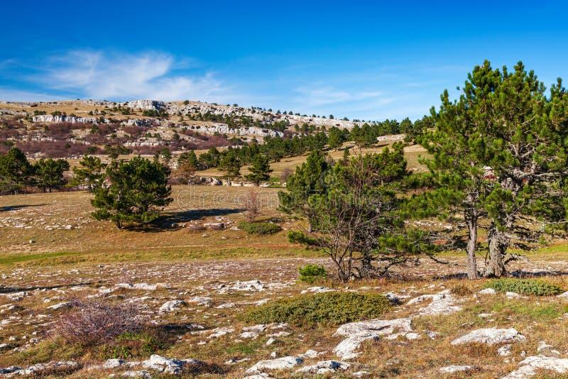 Ландшафт горы на солнечном весеннем дне стоковые фото