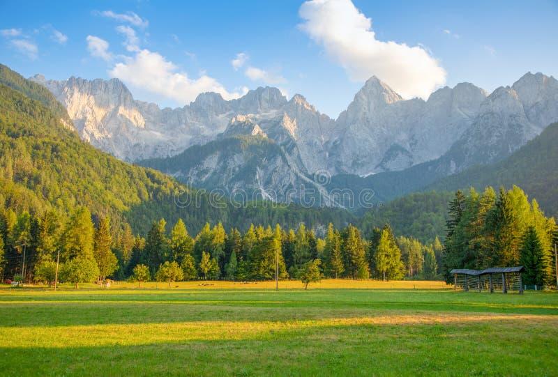 Ландшафт горы рядом с Kranjska Gora, Словенией стоковые изображения rf