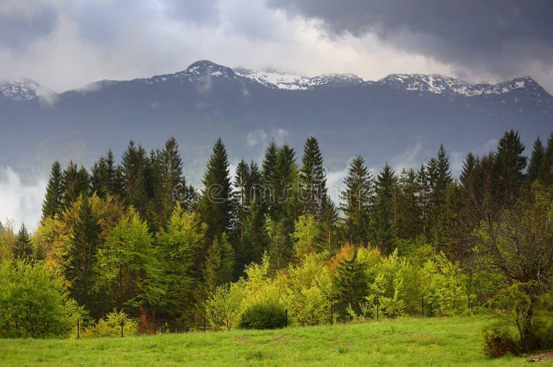 Ландшафт горы с туманом и облаками стоковые изображения