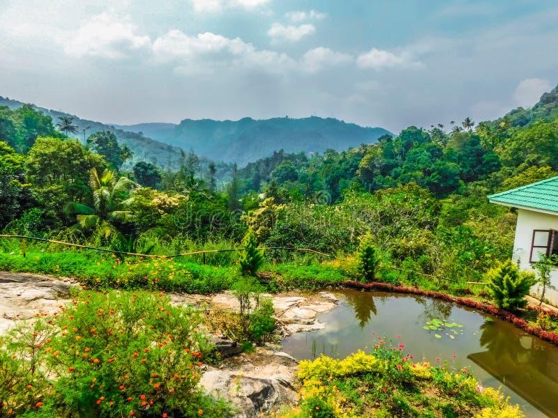 Ландшафт захваченный на Cochin стоковые фото