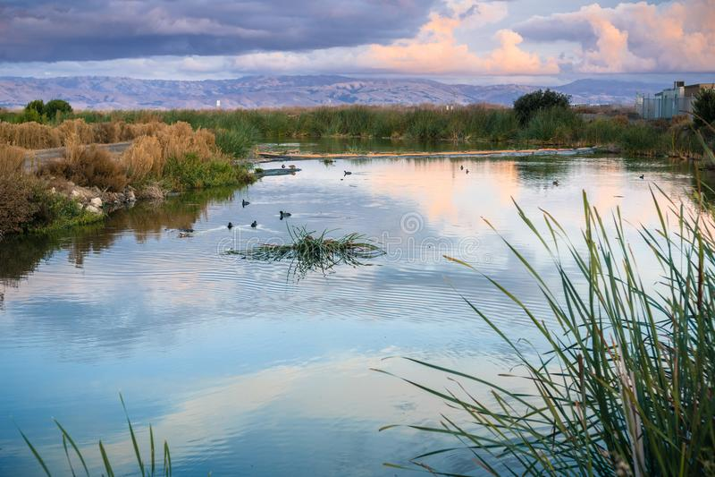 Ландшафт захода солнца болот южного San Francisco Bay, Sunnyvale, Калифорнии стоковые изображения rf