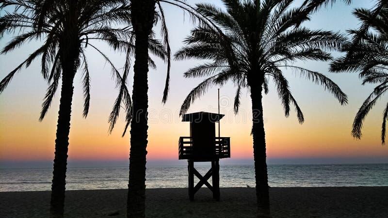 Ландшафт: Заход солнца в пляже стоковое изображение rf