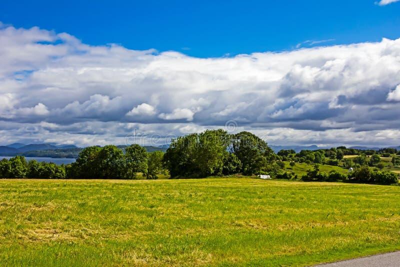 Ландшафт зеленых деревьев поля и облаков шторма стоковая фотография rf