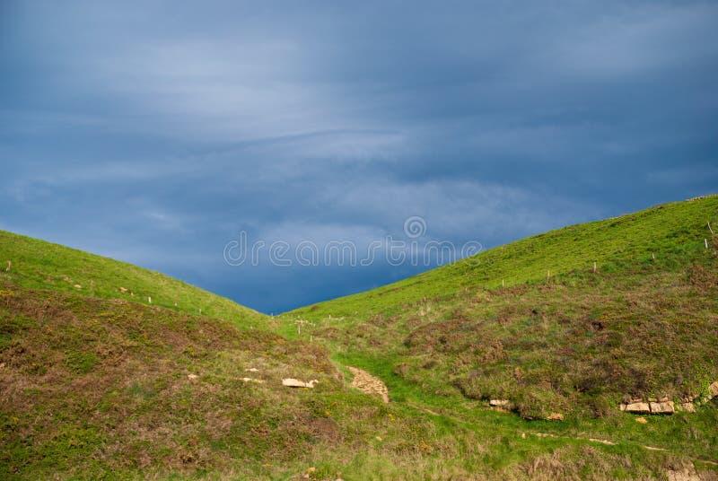 Ландшафт зеленых лугов на заходе солнца с бурным голубым небом стоковые фотографии rf