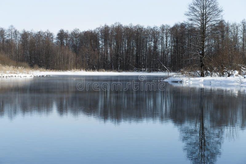 Ландшафт зимы в предместье Казани стоковое фото rf