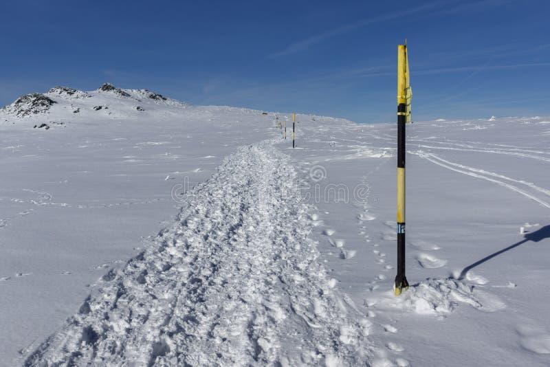 Ландшафт зимы горы Vitosha, Болгарии стоковое фото rf