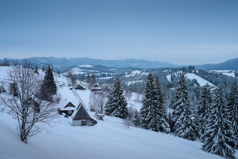 Ландшафт зимы гор carpathians зона сельская Украина, Bukovel стоковые изображения rf
