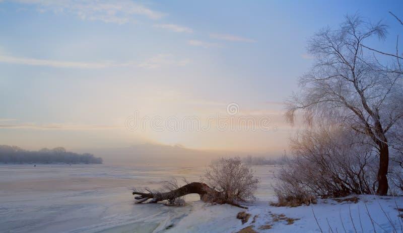 Ландшафт зимы искусства с замороженным озером и снежными деревьями стоковое изображение
