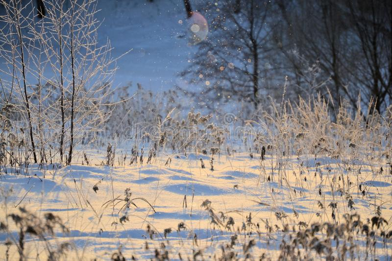Ландшафт зимы сказки солнечный Снежинки накаляют в солнце Новый Год рождества счастливое веселое стоковая фотография rf