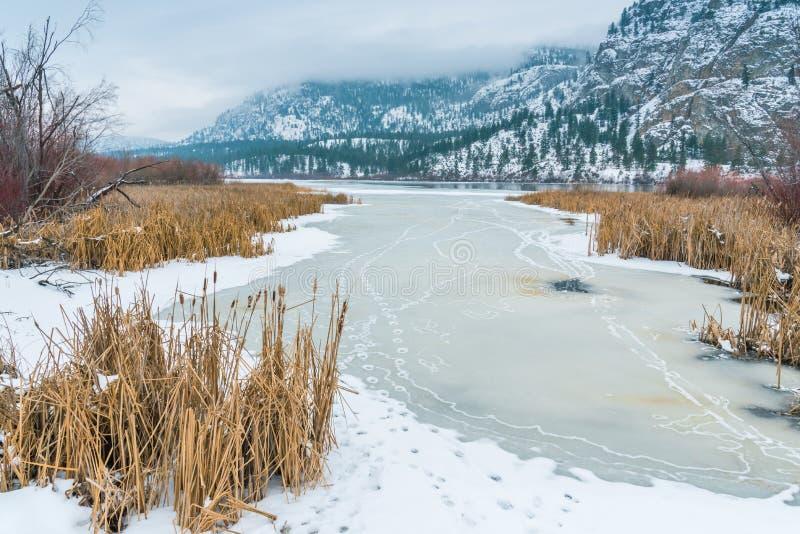 Ландшафт зимы снега покрыл среду обитания, озеро, и горы заболоченного места стоковая фотография