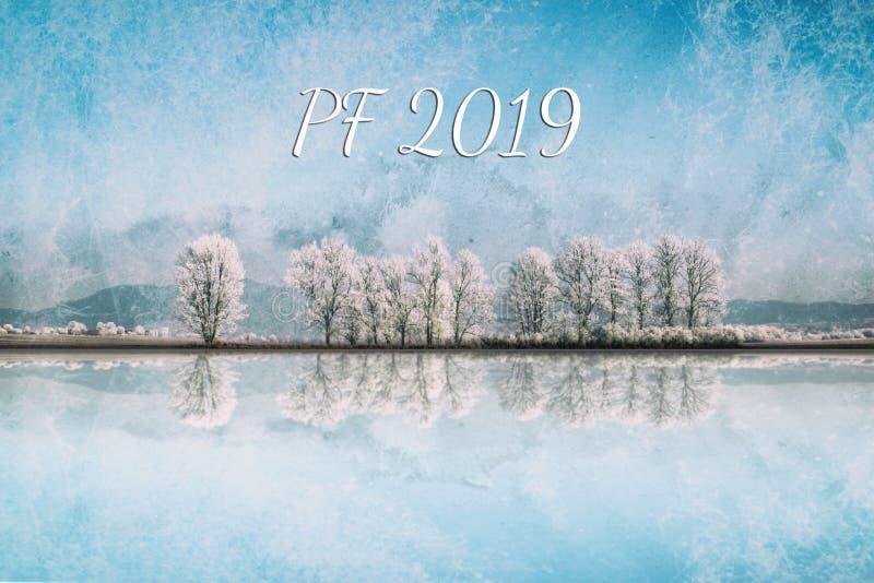 Ландшафт зимы с переулком снежных деревьев стоковые изображения rf