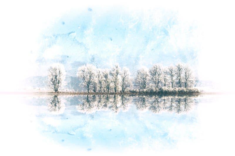 Ландшафт зимы с переулком снежных деревьев стоковая фотография