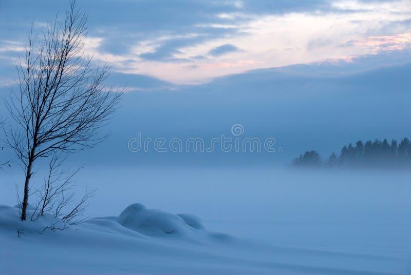 Ландшафт зимы Snowy на сумерк стоковые изображения rf