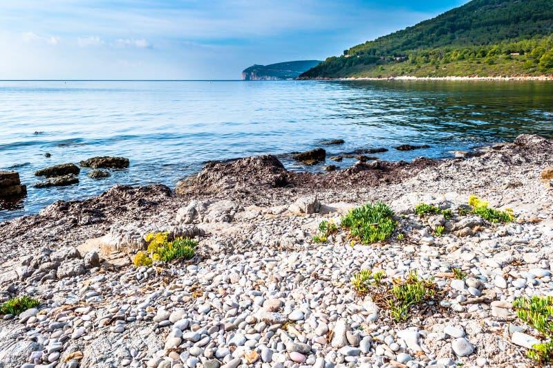 Ландшафт каподастра Caccia от побережья стоковое фото