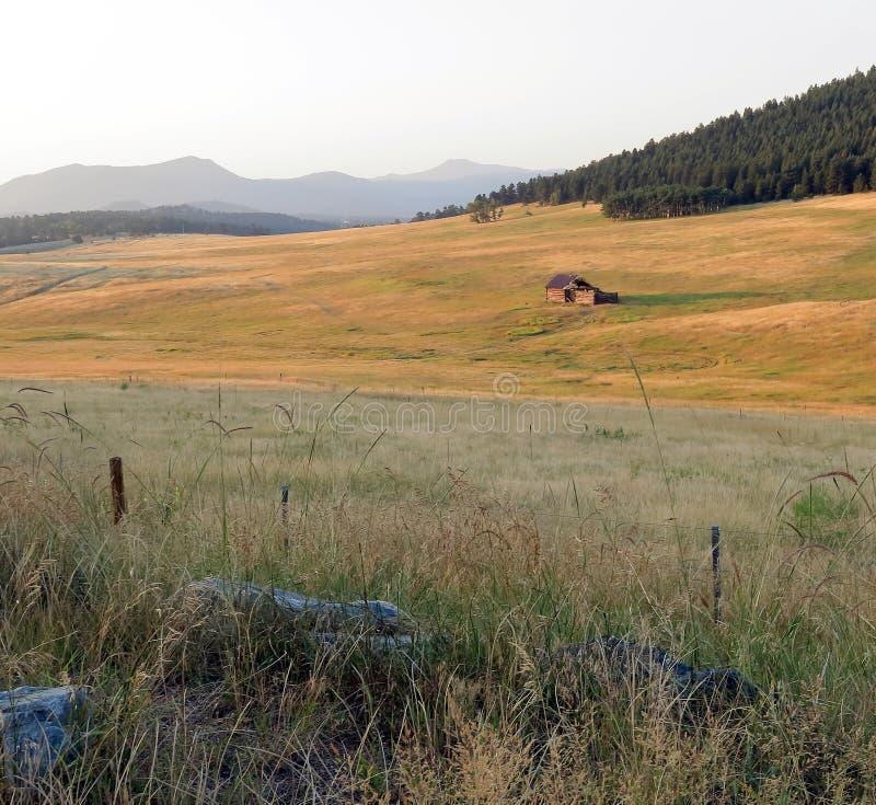 Ландшафт Колорадо со старой получившейся отказ деревянной лачугой стоковое изображение