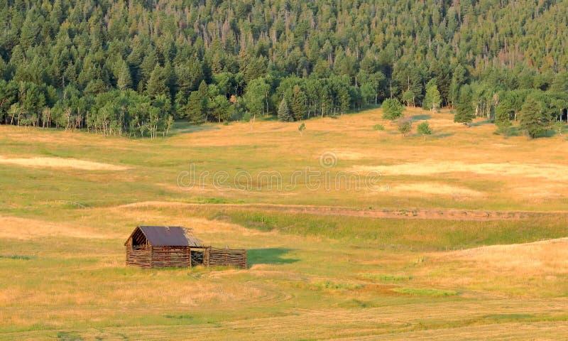 Ландшафт Колорадо со старой получившейся отказ деревянной лачугой стоковая фотография rf