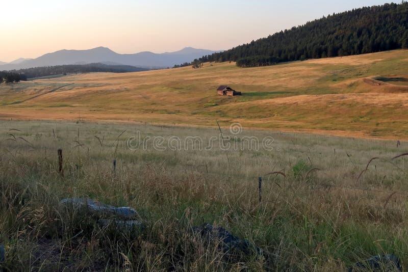 Ландшафт Колорадо со старой получившейся отказ деревянной лачугой стоковая фотография