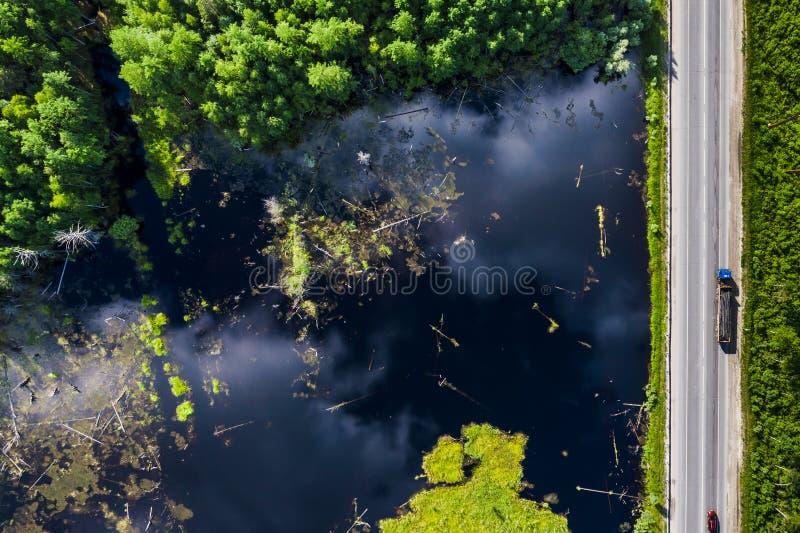 Ландшафт лета болота, зеленый цвет, взгляд сверху Отражение облаков в воде стоковые изображения rf