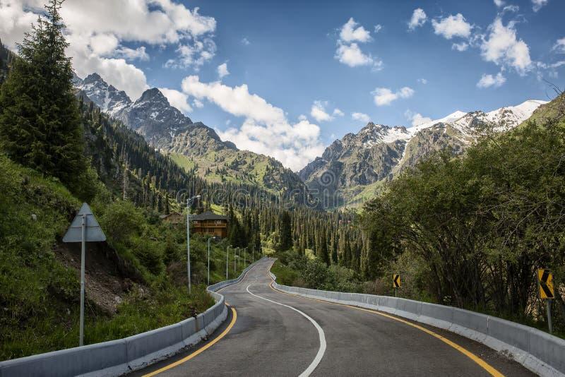 Ландшафт лета в горах стоковые изображения