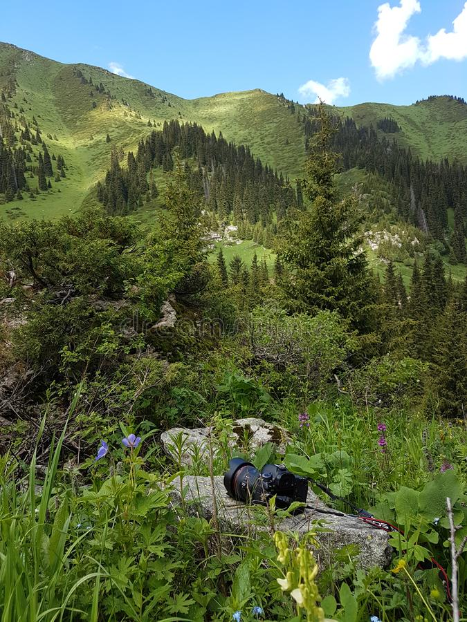 Ландшафт лета в горах стоковые фото