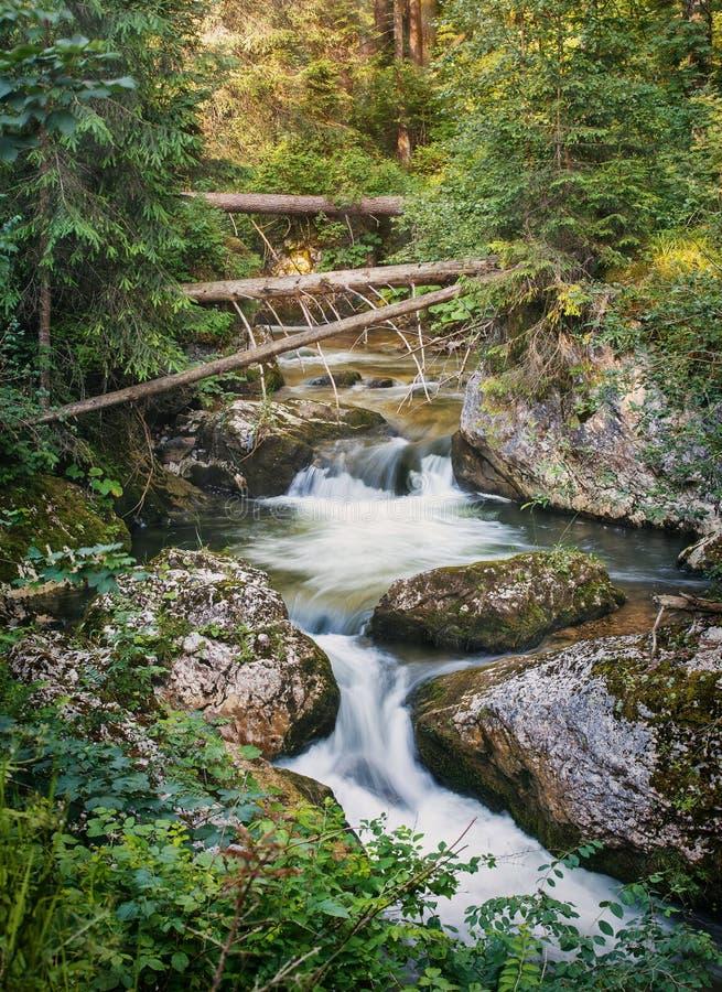 Ландшафт ЛЕТА осень раньше сделала изображением гор горы приполюсный поток стоковая фотография