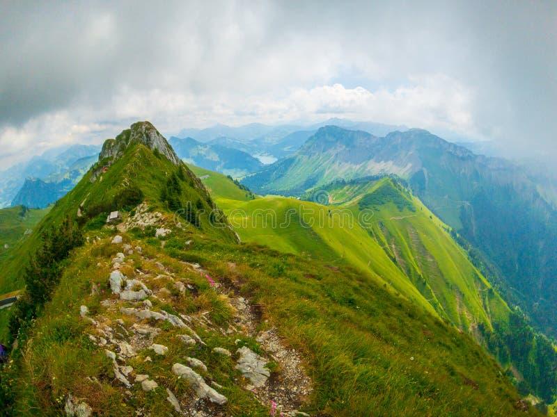 Ландшафт лета природы Швейцарии на Rochers-de-Naye стоковые изображения rf