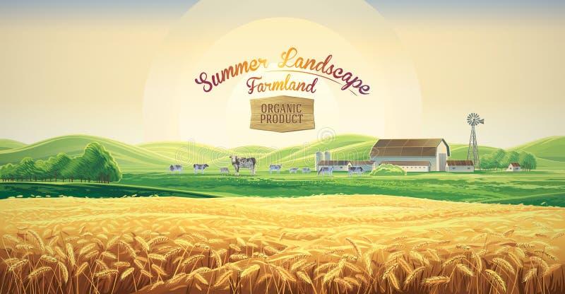 Ландшафт лета сельский с коровами и фермой иллюстрация вектора