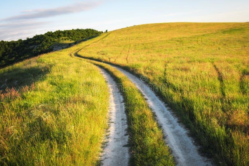 Ландшафт лета с зеленой травой, дорогой стоковые фотографии rf
