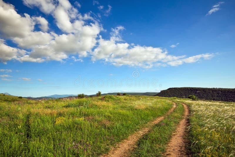 Ландшафт лета с зеленой травой, дорогой стоковое изображение rf