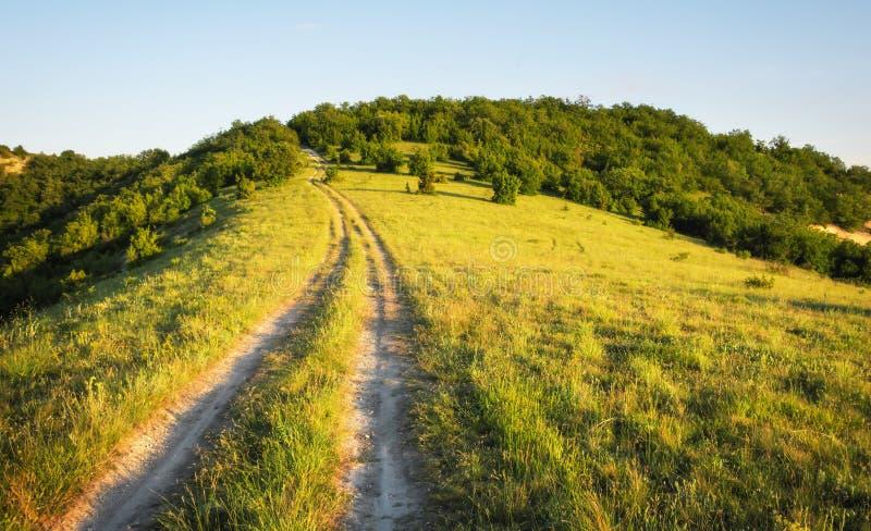 Ландшафт лета с зеленой травой, дорогой стоковые изображения rf