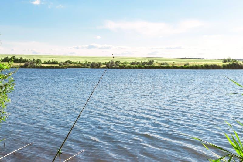 Ландшафт лета с красивым голубым озером и зеленые поля против голубого неба Пеший туризм, удя на пруде Путешествие к реке стоковые фото