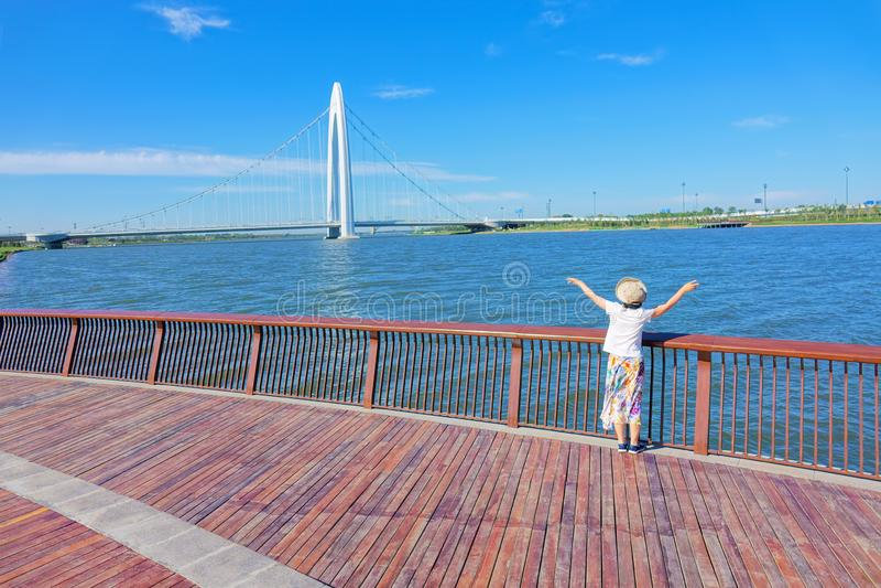 Ландшафт моста стоковая фотография rf
