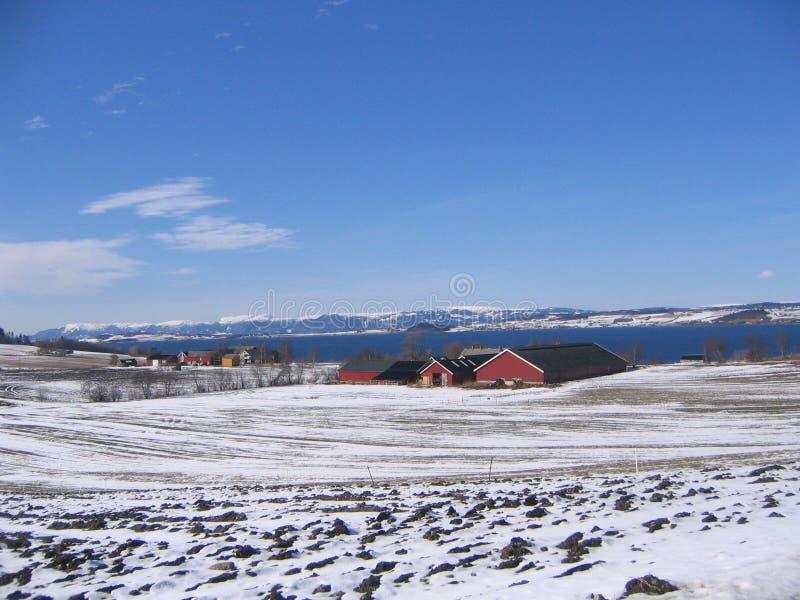 ландшафт Норвегия стоковые фото