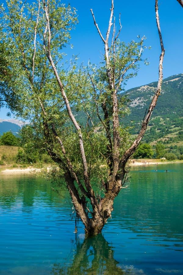 Ландшафт озера Барреа, Абруццо, Италия стоковая фотография
