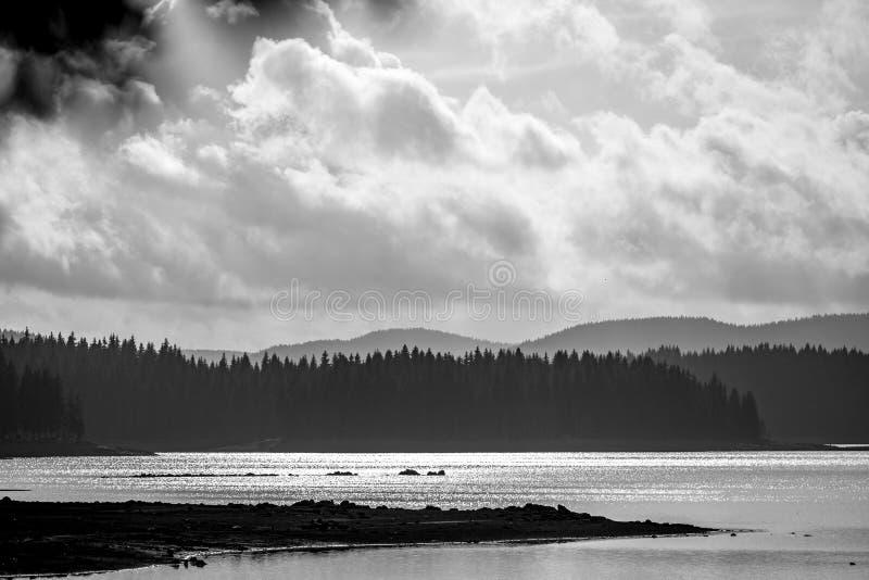 Ландшафт озера весн с сверхконтрастным стоковые изображения rf