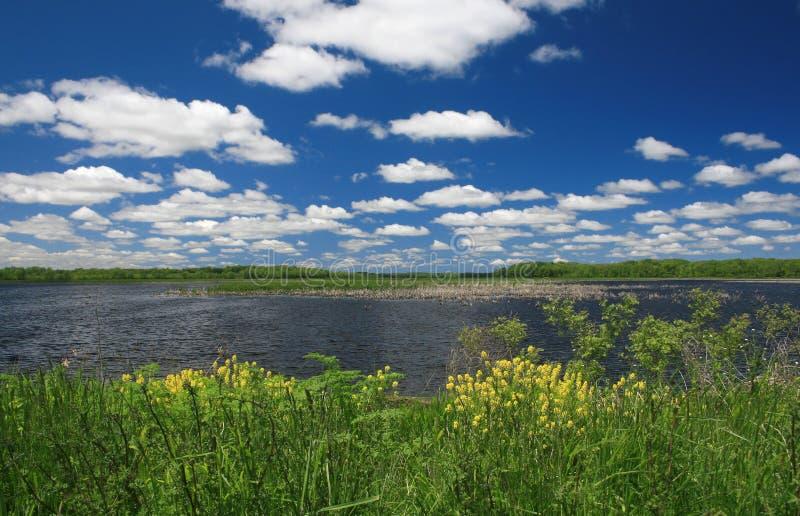 ландшафт озера стоковое изображение