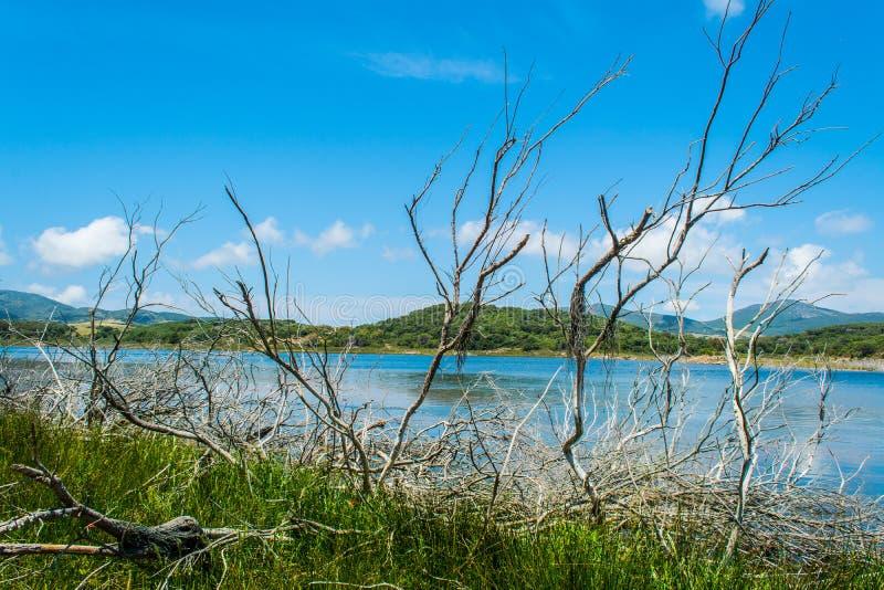 Ландшафт озера Baratz стоковые изображения rf