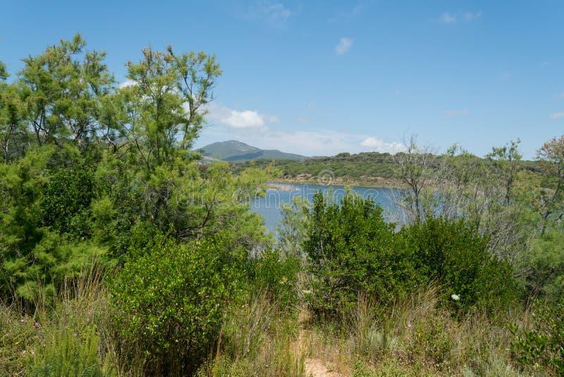 Ландшафт озера Baratz стоковое изображение