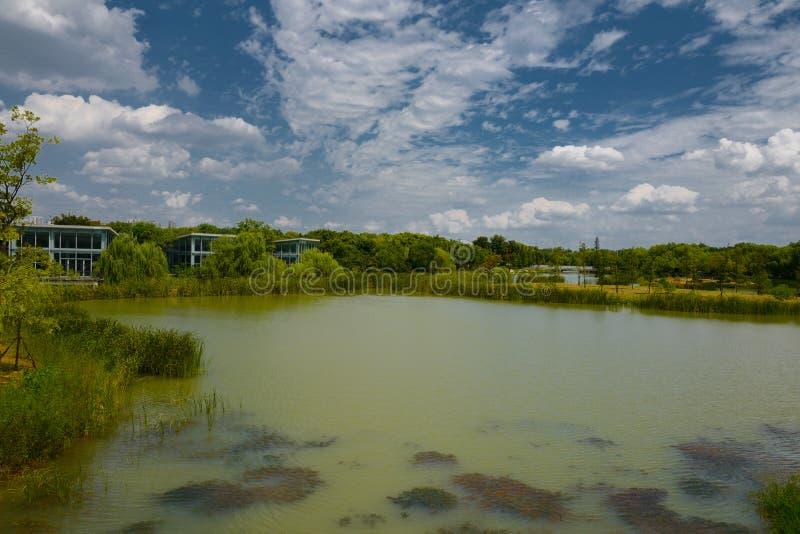 Ландшафт озера Taihu стоковая фотография