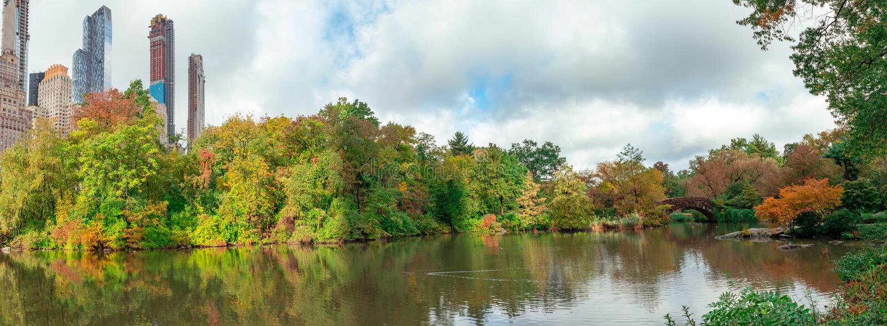 Ландшафт осени в Central Park стоковое фото