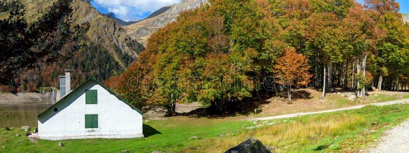Ландшафт осени горы с цветастой пущей стоковые фотографии rf