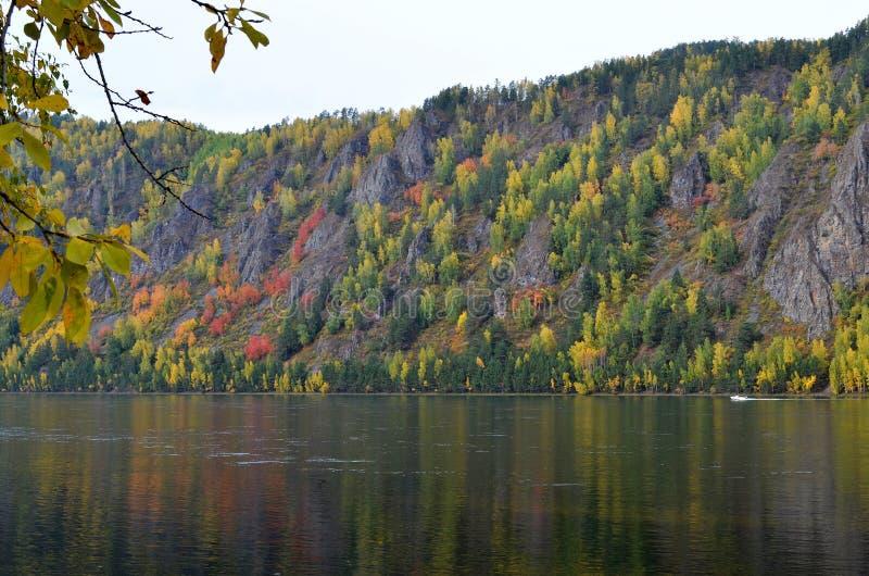 Ландшафт осени горы с ярким взглядом цветов осени от речного берега стоковые фото