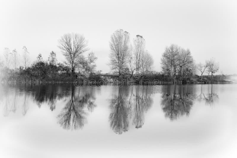 ландшафт осени красивейший Деревья отразили в воде озера Черно-белые цвета стоковое фото rf