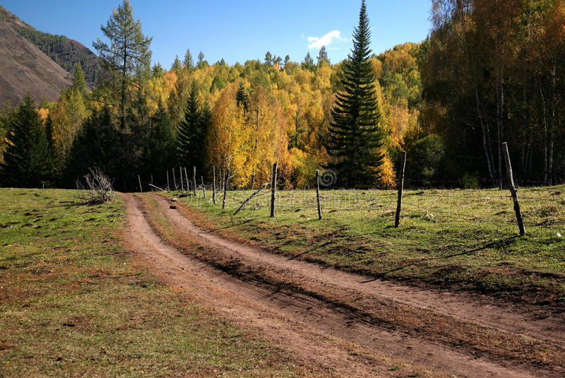 ландшафт осени красивейший стоковое фото rf