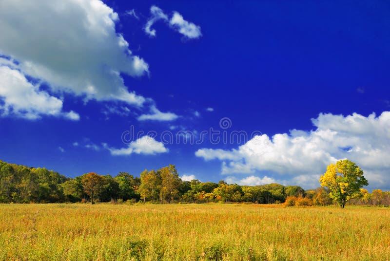 Download ландшафт осени красивейший стоковое изображение. изображение насчитывающей countryside - 6859041