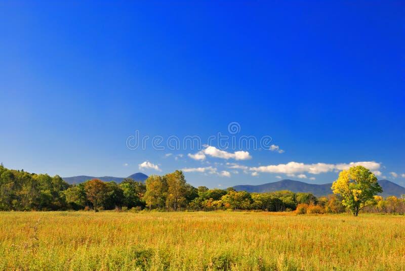 Download ландшафт осени красивейший стоковое фото. изображение насчитывающей cloudscape - 6859106